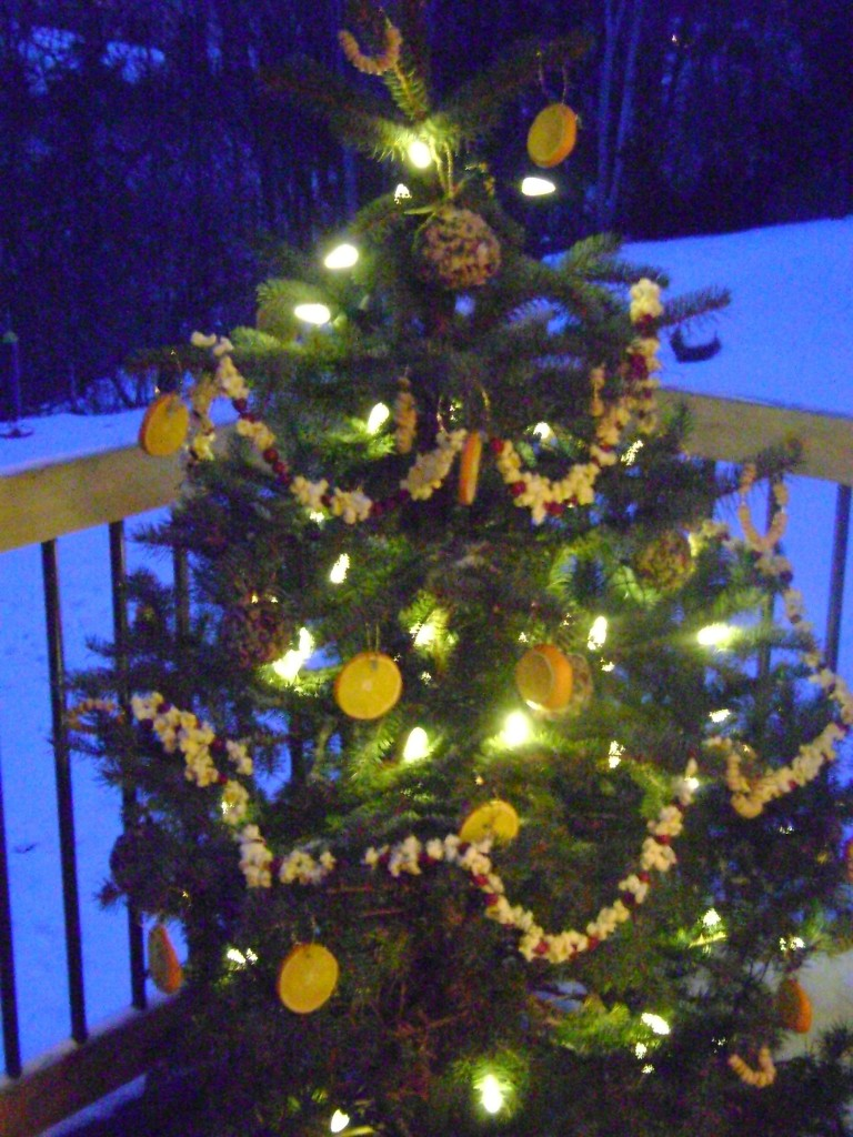homemade christmas decorations outdoor tree birds
