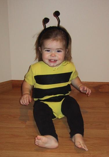 homemade bumblebee costume
