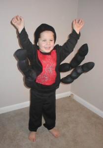halloween_spider costume halloween