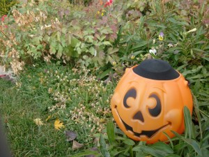 Dollar Store Halloween Decoration: Jack-o-Lantern Yard Lights