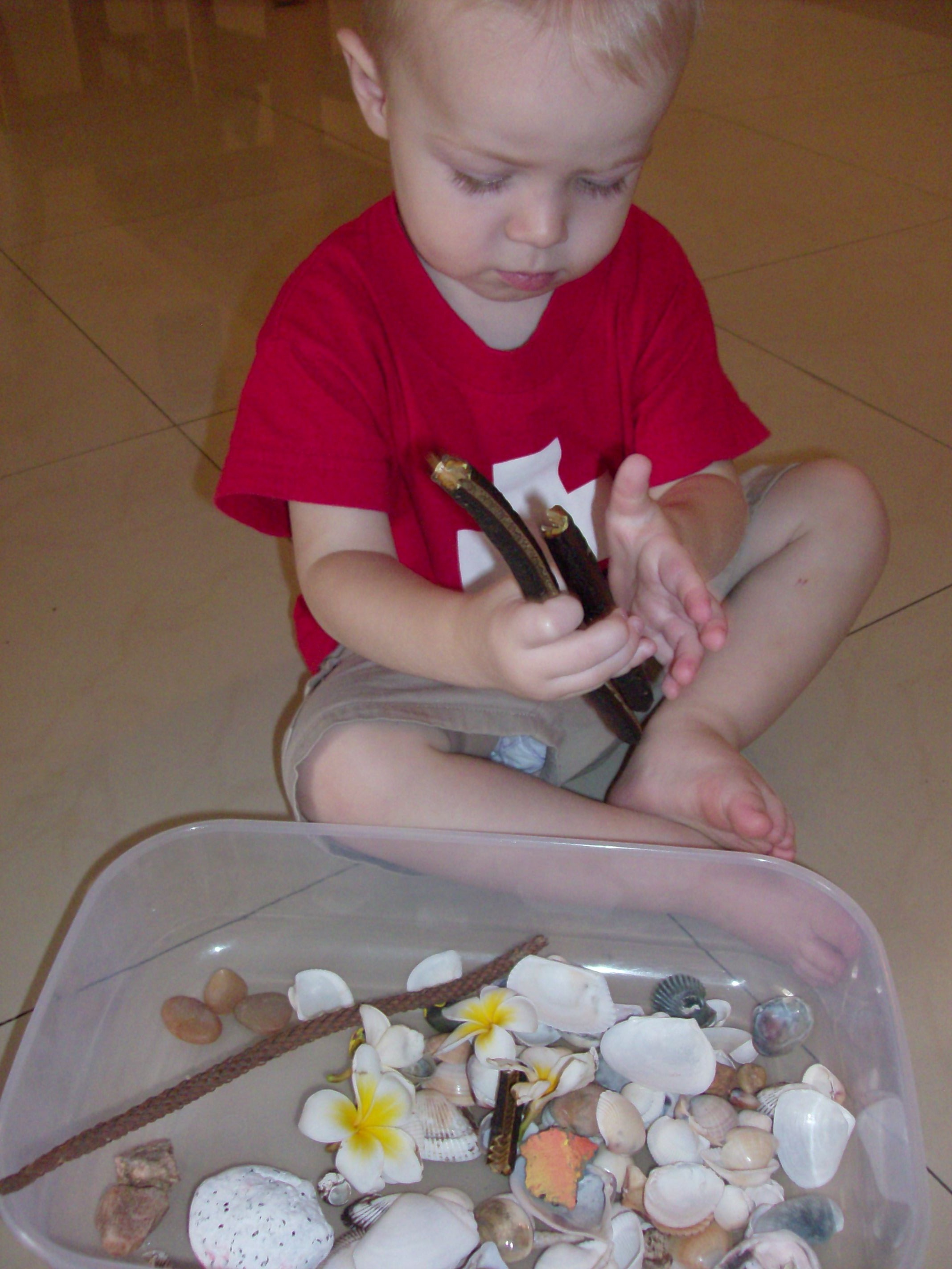 Summer Nature Treasure Box Activity