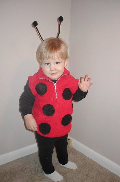 Homemade Costume Idea Ladybug  sc 1 st  Mommysavers & Homemade Costume Idea: Ladybug - Mommysavers | Mommysavers
