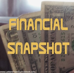 Find Your Financial Snapshot