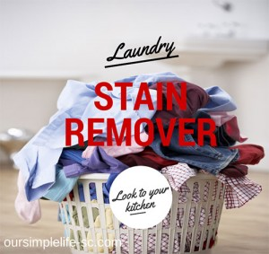 No Laundry Stain Remover? No Problem. Look to Your Kitchen!