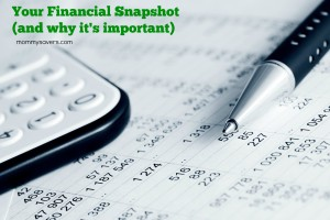 Financial Snapshot