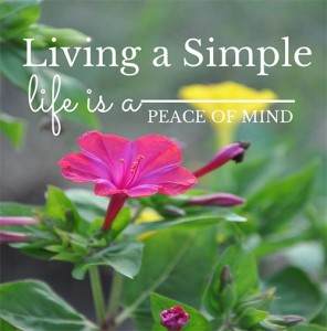A simple life is a state of mind