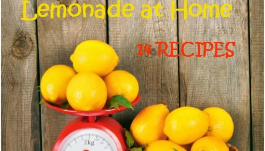 Make Restaurant Style Gourmet Lemonade at Home:  14 Recipes
